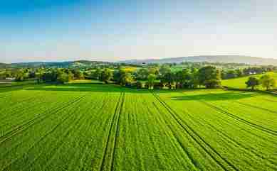 The farmland market's uncertainty trend