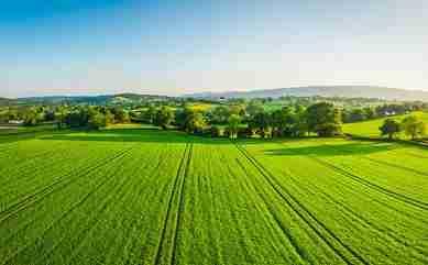 The farmland market's uncertainty trend