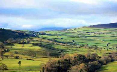 Is payment by results the future of English agri-environment schemes?